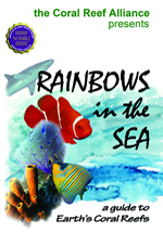 Rainbows in the Sea Cover